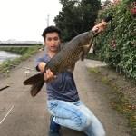 ザリガニで鯉を釣る