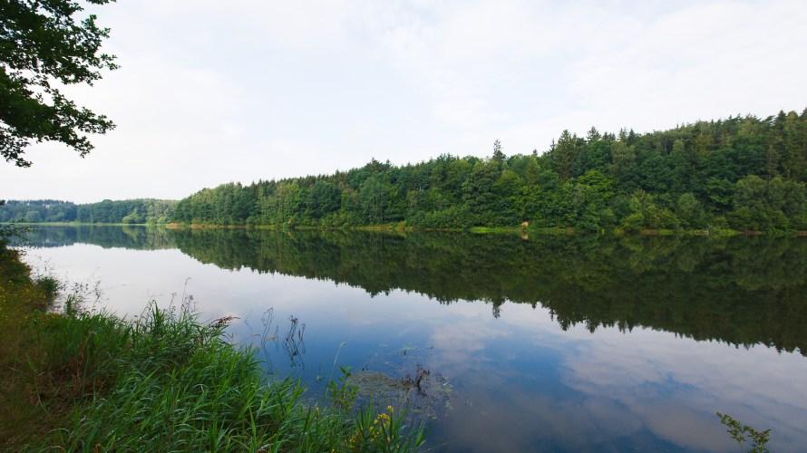 【バス釣り 戦略論】大きな野池と小さな野池はどう攻める?
