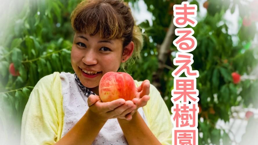 【福島の桃】まるえ果樹園の桃狩りは美味しくて最高だった