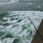 久慈川のシーバスを攻略しよう!久慈川シーバスを攻略するための釣り場・タックル・ルアーについて紹介