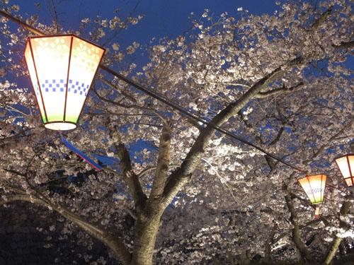 大阪城公園 西の丸庭園 ライトアップ