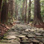 【熊野古道コース】初心者におすすめ!日帰りコース5選!大門坂がおすすめ!