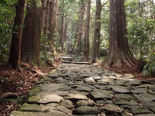 熊野古道とは?熊野古道はどこ?初心者おすすめコースは大門坂から那智の滝!
