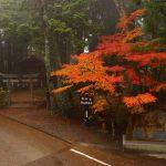秋の熊野古道!9月・10月・11月の熊野三山めぐり!ハイキングと温泉情報!