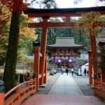 紅葉関西2018!おすすめ人気の「高野山」とニュウツヒメ神社の紅葉の見頃情報!