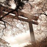 【熊野古道・中辺路コース】距離・マップ・宿泊・バス時刻表など情報集
