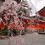 熊野古道のおすすめ季節は?ベストシーズンはいつ?