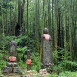 【熊野古道・伊勢路】アクセス!東京・大阪・名古屋・福岡からの行き方