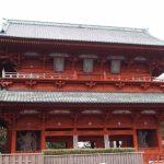 【高野山町石道コース】初心者と一緒に歩いた体験記「予想外の展開で始まった熊野古道」