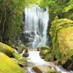 【関西】滝のパワースポット!癒しの滝!日本滝100選の「桑ノ木の滝」
