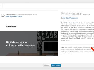 cara menghapus theme atau template wordpress