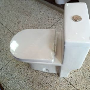 Milano closed couple toilet with S-trap at 650k 2