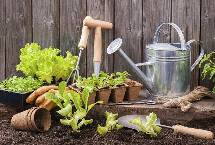 Огород без химикатов