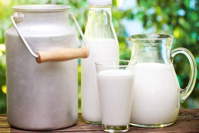 Молоко помогает сохранить память