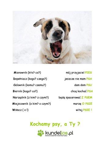 kochamy psya TY -page-0
