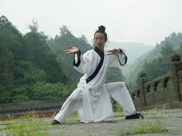 Kung Fu Madrid