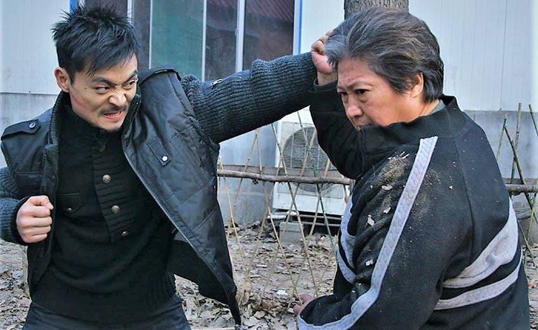 Wushu (2008) - Kung Fu Kingdom