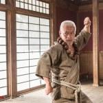 Master Gotetsu (Togo Igawa)
