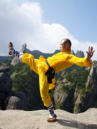 Shifu-Yan-Lei--mountain-fu-3