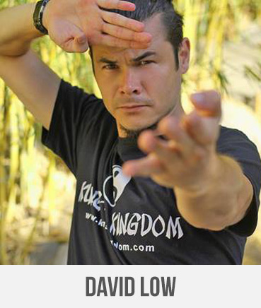 David-Low