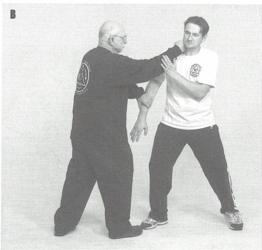 JKD punch!