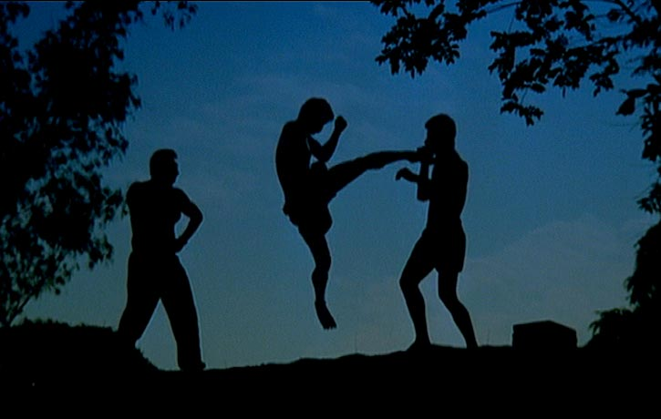 Flying kick silhouette