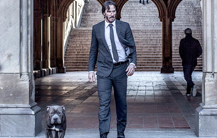 One Hitman and His Dog