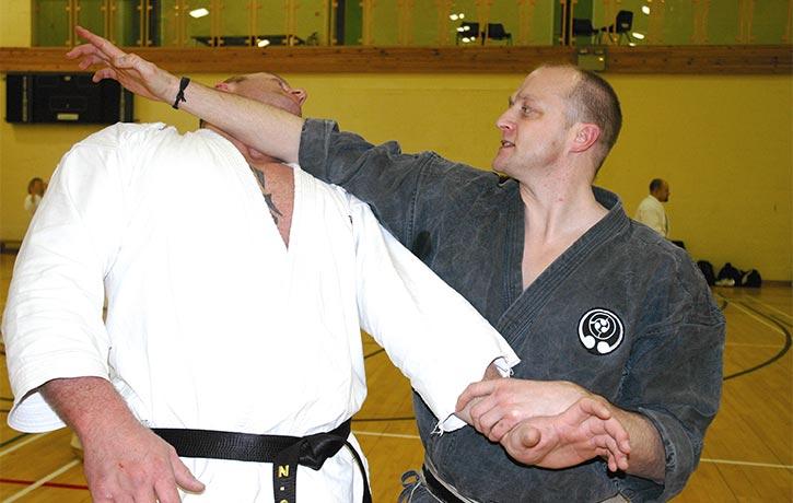 Gavin Mulholland karate