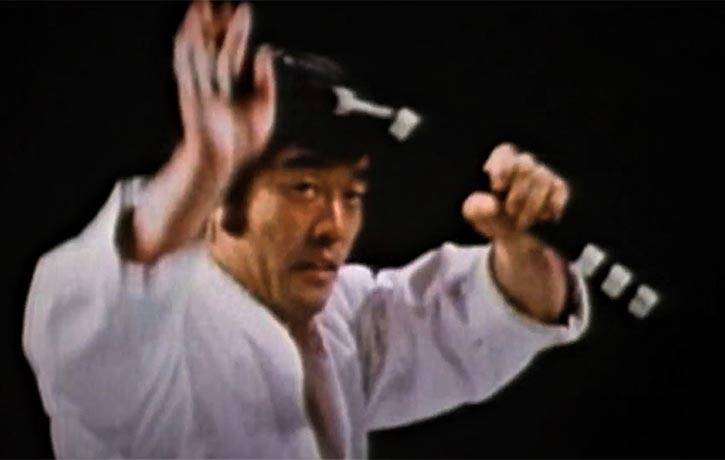 A master with the Nunchaku