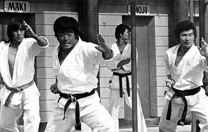 Leading the kata