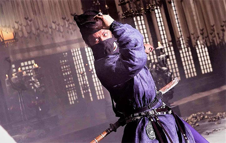 The fight choreography retains recognisable martial arts moves