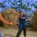 Essential viewing for Shaw Brothers fans!