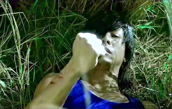 Donnie Yen as Dragon Wong's got half the jade