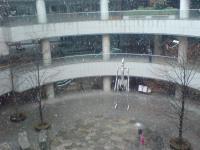 オペラシティも雪