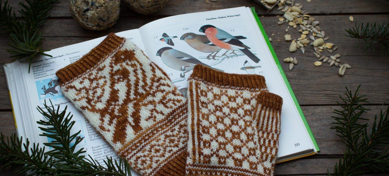 Wildbird Handschuhe Intro