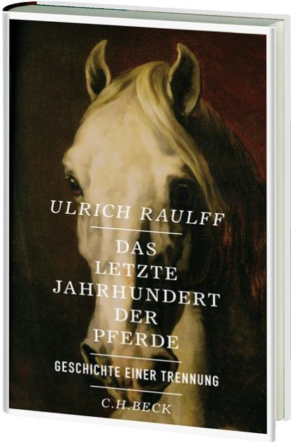 raulff_pferde