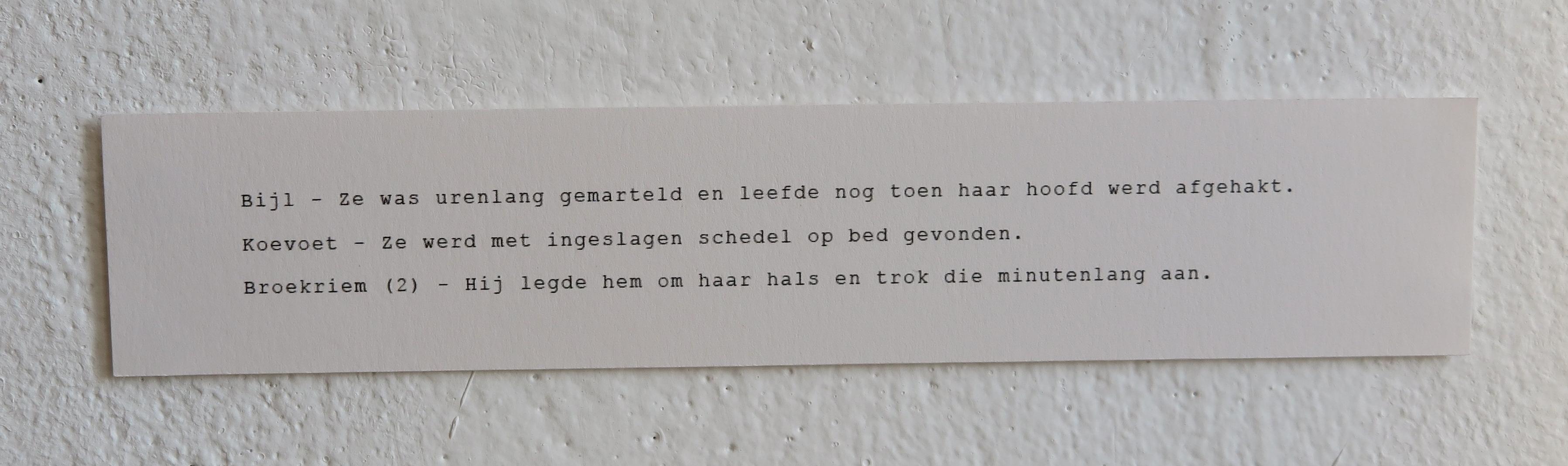 Monica Overdijk - Tekst bij expositie