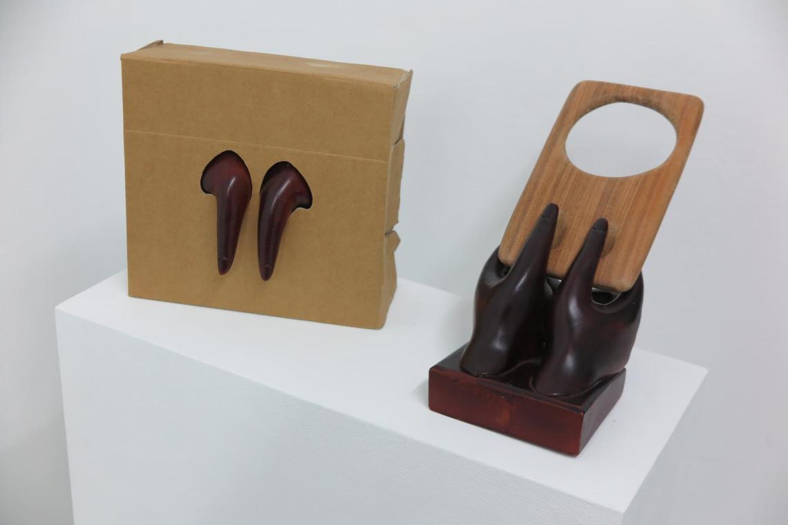 galerie Rianne Groen - Rosa Sijben & David Bernstein
