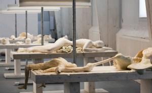 Cradle to Cradle (2009) - Van Lieshout
