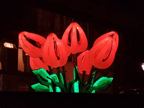 bunch of tulips peter koros