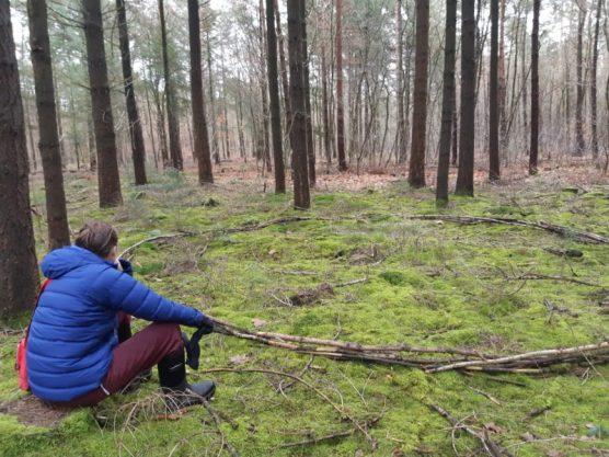 Cirkel in het mos (C5 van Antoon Loomans), dat duurt nog jaren voordat het mos over de takken is gegroeid. Echt slow art :-)
