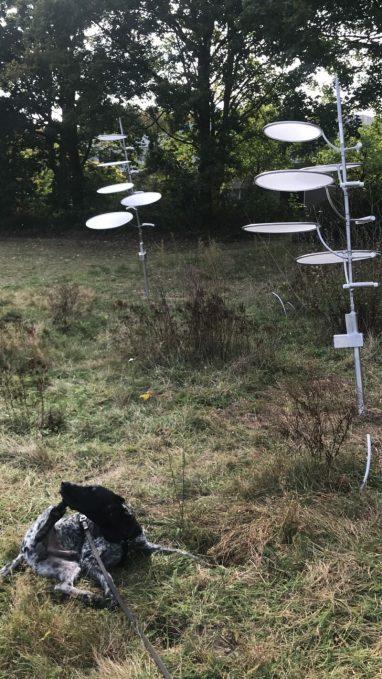 Sil krabt zich achter de oren bij twee 'planten' van Bart Nijboer die op zoek zijn naar licht. Twee ronddraaiende assen met cirkelvormige bladeren. Ze komen niet helemaal tot hun recht vind ik.