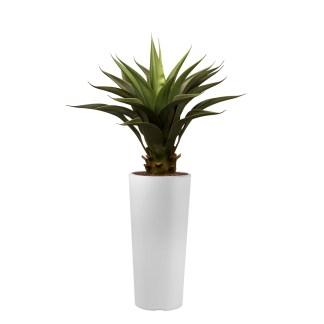 HTT - Kunstplant Agave vetplant in Clou rond wit H100 cm - kunstplantshop.nl