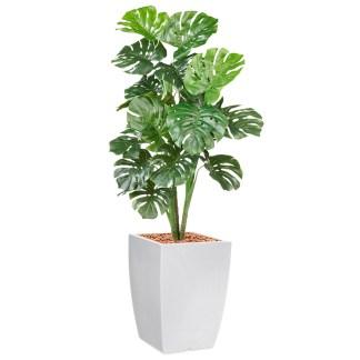 HTT - Kunstplant Monstera in Genesis vierkant wit H150 cm - kunstplantshop.nl
