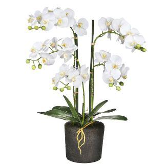 HTT Decorations - Kunstplant Orchidee / Phalaenopsis XL 5-tak wit H68cm - kunstplantshop.nl