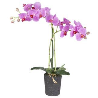 HTT Decorations - Kunstplant Orchidee / Phalaenopsis 2-tak roze 53 cm hoog - Kunstplantshop.nl