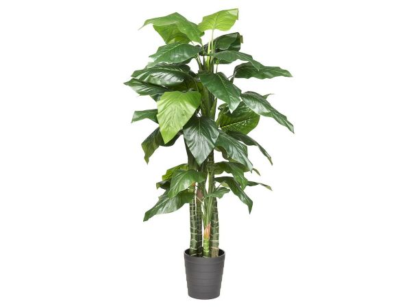 HTT Decorations - Kunstplant Philodendron H180cm - kunstplantshop.nl