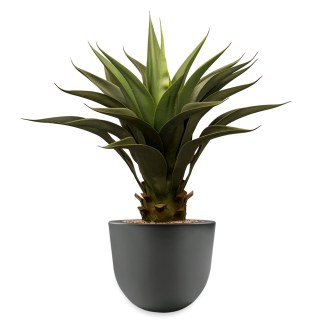 HTT - Kunstplant Agave vetplant in Eggy antraciet H70 cm - kunstplantshop.nl