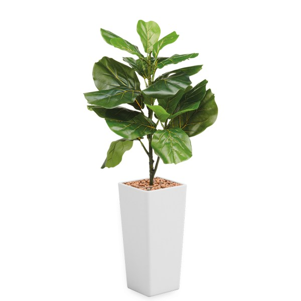 HTT - Kunstplant Ficus Lyrata in Clou vierkant wit H115 cm - kunstplantshop.nl