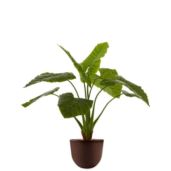 HTT - Kunstplant Philodendron in Eggy bruin H115 cm - kunstplantshop.nl